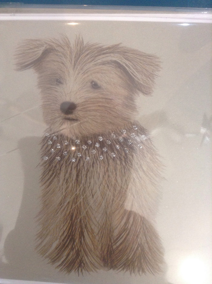 Dog with silver glitter collar
