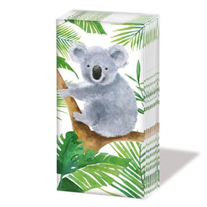 PPD - Sniff- tropical koala bear