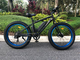 "The ""PVB"" Fat Tire Mountain Bike!  SOLD OUT"