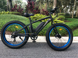 "The ""PVB"" Fat Tire Mountain Bike!  Available Now"