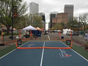 Multi-Sport Net and Barrier (12 X 3)