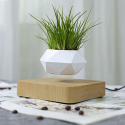 The Flying Fern Magnetic Levitation Planter for Home & Office Decor