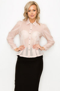 Organza Pleated Long Sleeve Blouse