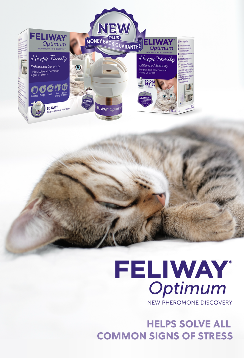 Feliway Optimum Diffuser set 48ml at Petremedies