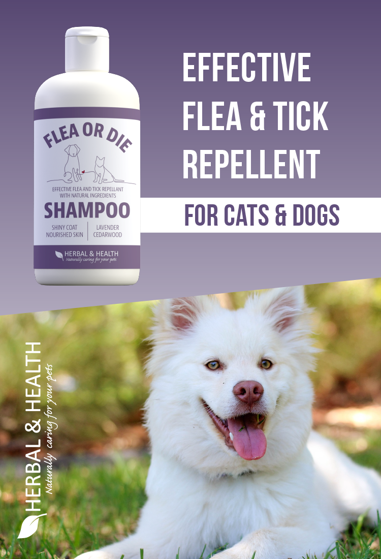 Flea or Die - Effective flea & tick repellent shampoo for cats & dogs