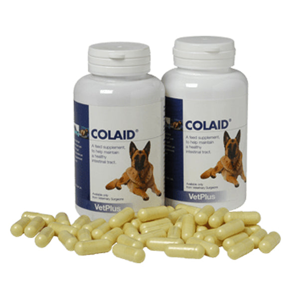 VetPlus Colaid Digestion Support (90caps) at Petremedies