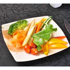 "20 x 20 cm (8"") Quadrato Square Plate, 10 pack or 25 pack or 100 case - Greenovation - Eco Dinnerware"