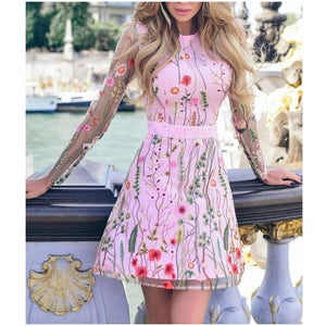 Sheer Layer Lace Embroidery Skater Dress
