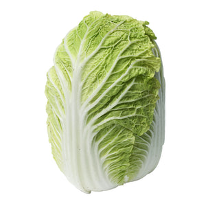 CHINESE CABBAGE/LONG CABBAGE