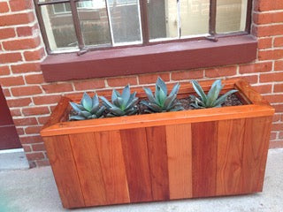 Custom redwood furniture: Hollywood Studio's Planter Boxes!