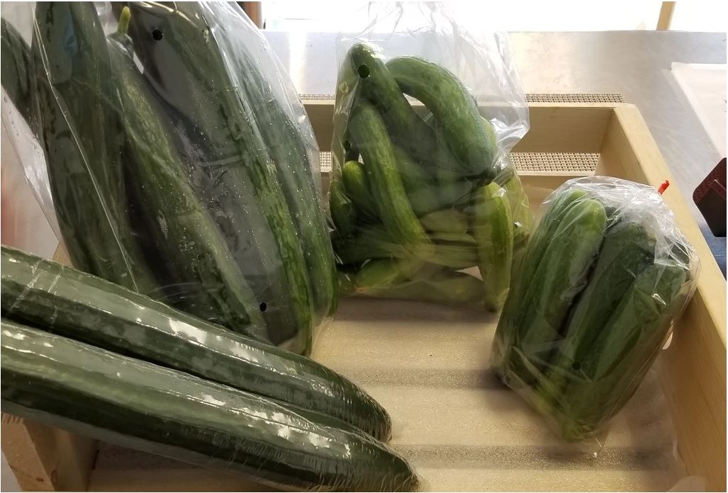Locally Grown Cucumbers