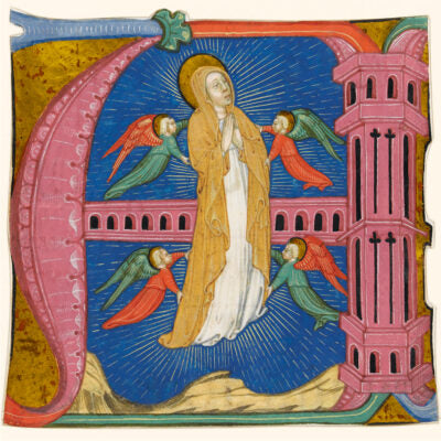 Featured image for the project: The Virgin Assumpta (Illuminated letter A) - Christmas card pack