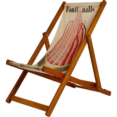 Deckchair with illustration Fontinalis by John Stevens Henslow. From the collection of the Whipple Museum of the History of Science, brought to you by CuratingCambridge.com