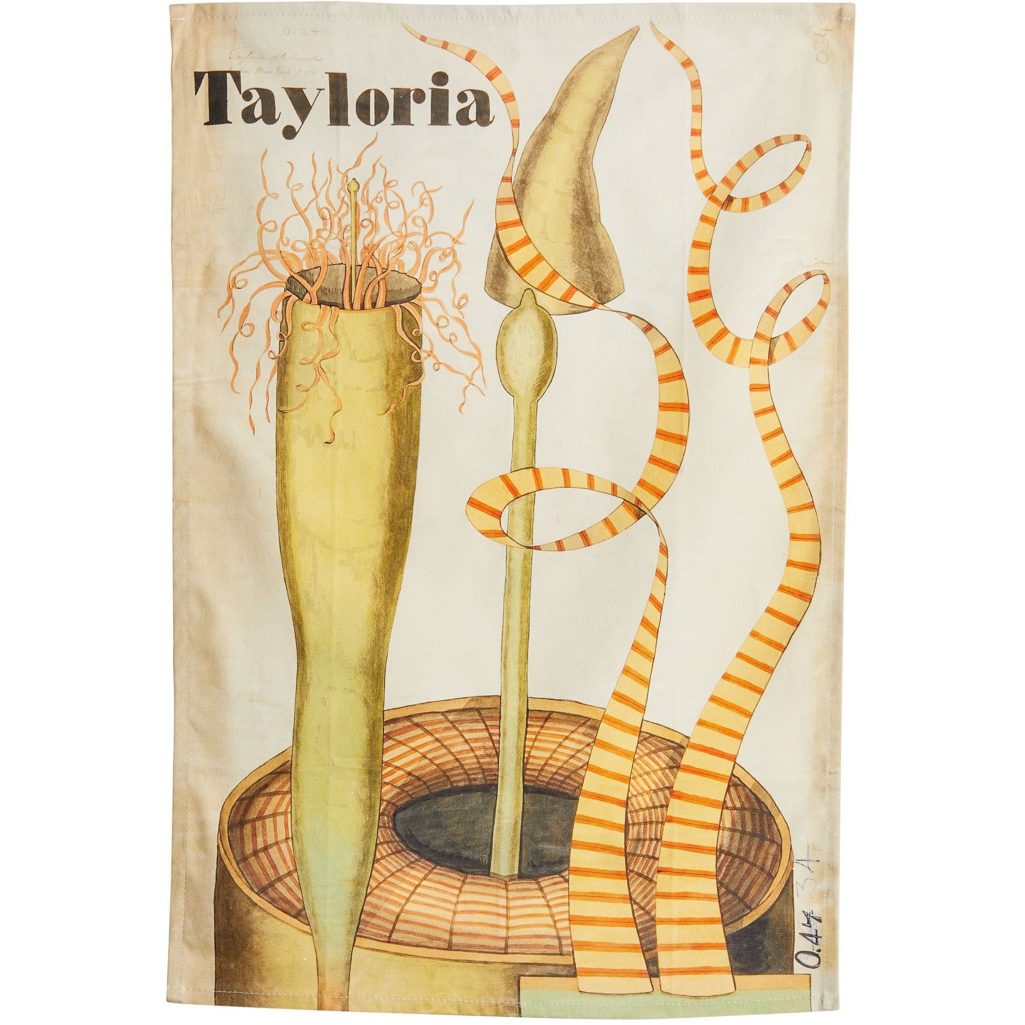 Featured image for the project: Henslow's Tayloria - Tea towel