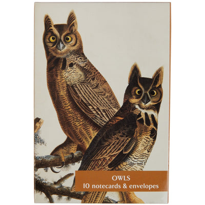 Notecard pack - Owls from The Birds of America by John James Audubon. Cover image - Great Horned Owl. From the collection of the Fitzwilliam Museum, brought to you by CuratingCambridge.co.uk