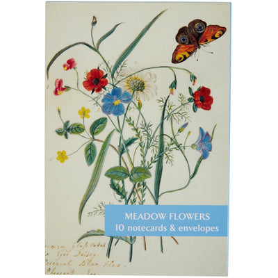Notecard pack - Meadow Flowers. Cover image - Flowers of the Field by Mary Forbes. From the Broughton collection of the Fitzwilliam Museum, brought to you by CuratingCambridge.co.uk