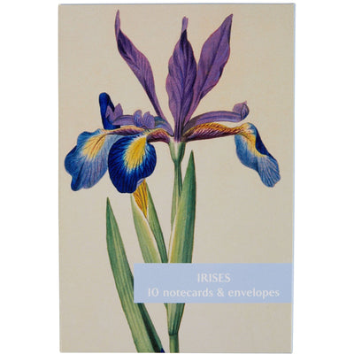 Notecard pack - Irises from the Broughton collection of The Fitzwilliam Museum. Brought to you by CuratingCambridge.com