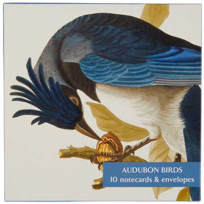 Notecard pack - Audubon Birds. Cover image: Columbia Jay from The Birds of America by John James Audubon. From the collection of The Fitzwilliam Museum, brought to you by CuratingCambridge.co.uk
