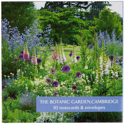 Notecarc pack - Cambridge University Botanic Garden, cover image of the bee border. Brought to you by CuratingCambridge.com