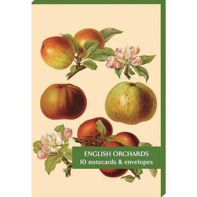 Notecard pack - English Orchards. Featuring illustrations by Alice Ellis and Edith Bull from the Herefordshire Pomona. From the collection of the Cory LIbrary at Cambridge University Botanic Garden, brought to you by CuratingCambridge.co.uk