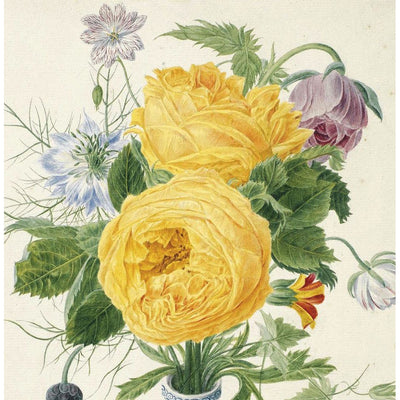 Greeting card - Yellow Roses with love-in-a-mist by Michiel van Huysum. A pair of yellow roses in watercolour. From the Broughton collection of The Fitzwilliam Museum, brought to you by CuratingCambridge.com