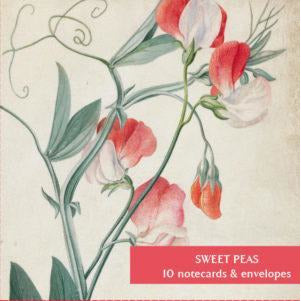 Sweet peas notecard pack. Cover image Lathyrus siculus flore by Georg Ehret. From the Fitzwilliam Museum, brought to you by CuratingCambridge.co.uk
