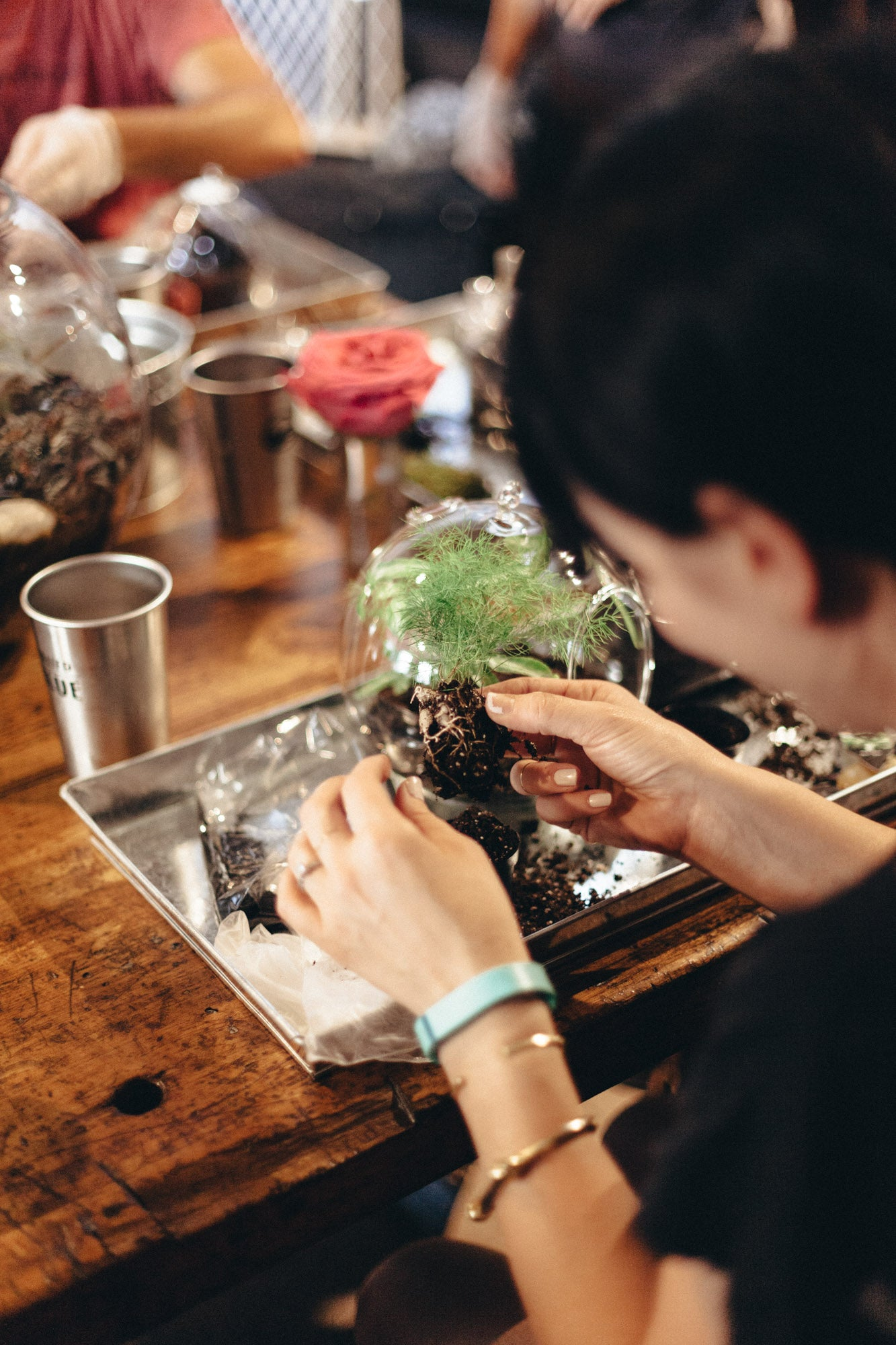 Terrarium Workshop at United By Blue