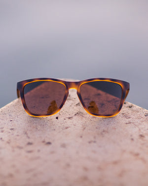 Madrona Sunglasses - Tortoise