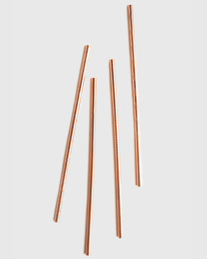 Adventure Copper Straw Set
