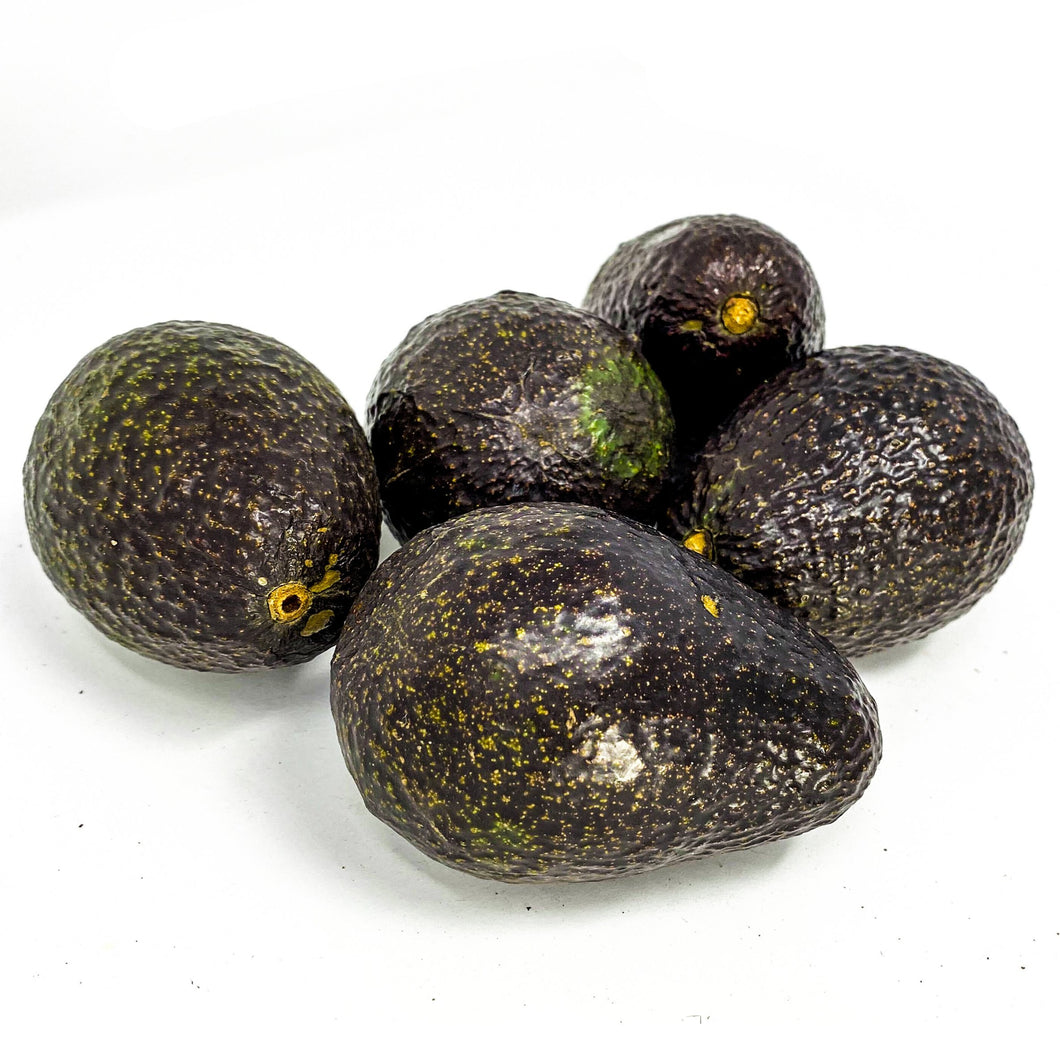 Avocado - Hass (Medium)
