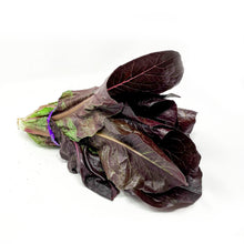 Load image into Gallery viewer, Lettuce - Red Leaf (Organic)
