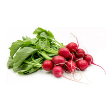 Load image into Gallery viewer, Radishes - Red (Organic)