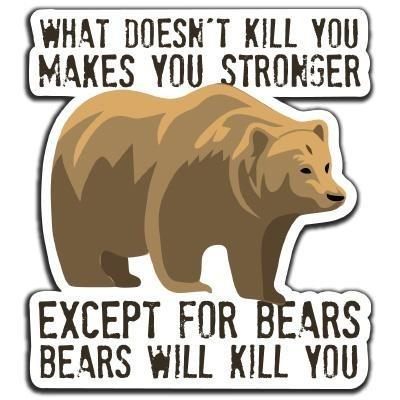 Bear Safety Decal (What doesn't kill you...) - RestockYourKit.com