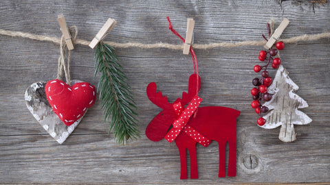 Make holiday decorations with Vision Buddy