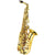 J.Michael Alto Saxophone With Soft Case 4460
