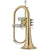 Jupiter JFH1100R Bb Flugelhorn Rosebrass Bell With Case