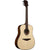 LAG T318D Dreadnought Natural Solid Engelmann Spruce Acoustic Guitar