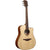 LAG T70DC Dreadnought Canadian Spruce Top Acoustic Cutaway Guitar