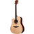 LAG TL70DCE Dreadnought Canadian Spruce Top Lefty Electro Acoustic Cutaway Guitar