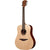LAG TL70D Lefty Dreadnought Canadian Spruce Top Acoustic Guitar