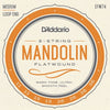 D'Addario Mandolin Strings EFW74 Mandolin/Flat Wound/Medium
