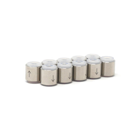 Stainless Steel Check Valve Capsule - 10 Pack
