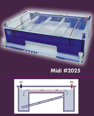 Gel Electrophoresis System | ExpressCast 81-2025 gel box with integral buffer recirculation
