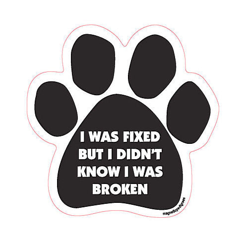 I Was Fixed But I Didn't Know I Was Broken
