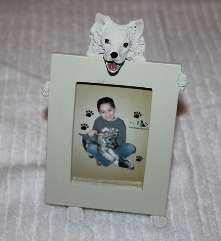 American Eskimo Dog Holding Picture Frame