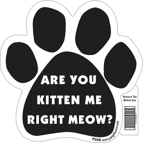 Are You Kitten Me Right Meow Paw Magnet