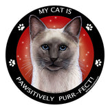 Blue Point Siamese Cat My Best Friend Dog Breed Magnet