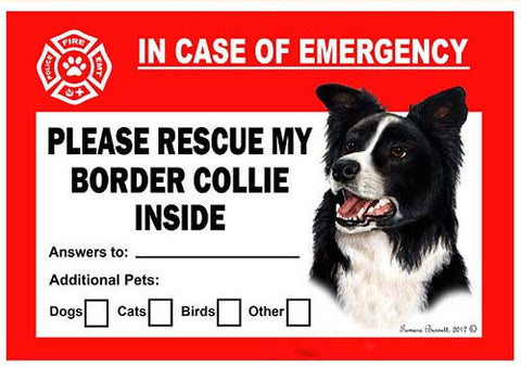 Border Collie Dog Emergency Window Cling