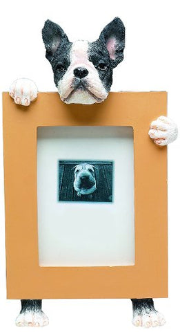 Boston Terrier Dog Picture Frame Holder