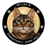 Brown Tabby Cat My Best Friend Dog Breed Magnet